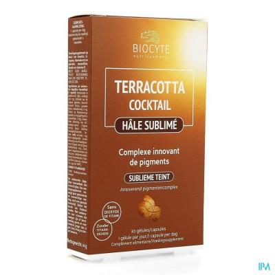 Biocyte Terracotta Cocktail Hale Sublime Comp 30