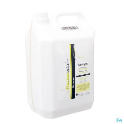 Dermavital Shampoo 5l