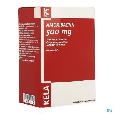 Amoxibactin 500mg Hond Comp 100
