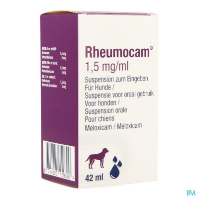 Rheumocam Susp 42ml
