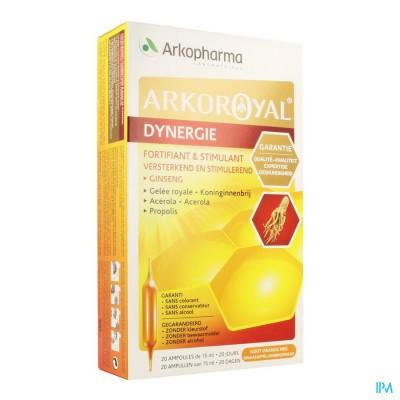 Arkoroyal Dynergie Amp 20