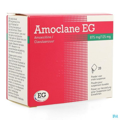 Amoclane Eg 875/125mg Pulv Susp Per Os Sach 20